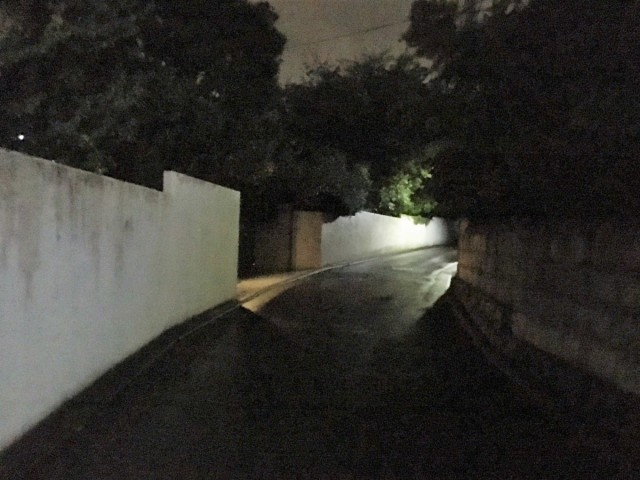 お気に入りの「夜道」